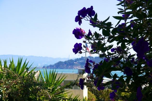 A week in SF 109